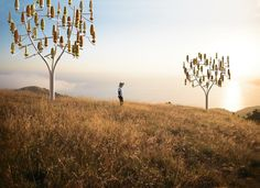 El árbol de viento: un poco de energía eólica con brisas suaves