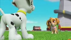 Snapshot Of Skye Talking With Marshall by on DeviantArt Nick Jr Paw Patrol, Paw Patrol Pups, Paw Patrol Books, Firefighter Bedroom, Marshall, Alvin And The Chipmunks, Least Favorite, Asian Boys, Red Hair