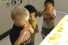 Fruit exploration with the Light Board-:-) Little Wonders School Blog