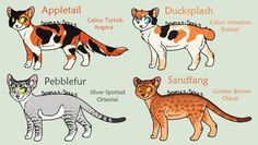 New Warrior Cat Adoptables 2 *CLOSED* by acornheart465
