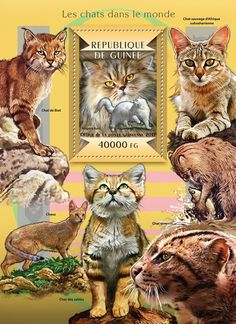 Post stamp Guinea-Bissau GU 15103 b	Cats of the World (Turkish Angora)