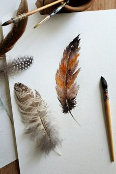 How to do a watercolor painting of bird feathers