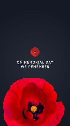 USAA proudly honors those who gave their lives in military service to our country. Learn what you can do to honor these servicemembers. Korean War Veterans Memorial, Veterans Day, Michael Reagan, Weekend Images, Veterans Administration, Worship God, Keep The Faith, Children Images, We Remember