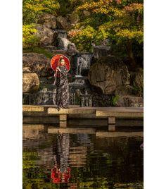 Shot in the #Japanese #Kyoto Gardens in #HollandPark, #London with model Mya Chan. #Zcreators #createyourlight #appicoftheweek #JustGoShoot #PicOfTheDay #WexPhoto #PhotoOfTheDay @uknikon #ThePhotoHour #FotoRshot #InstaGood #InstaPhoto #Photography #photographer #model #photoshoot #outdoorshoot #locationshoot #portrait #portraits #PortraitPerfection #portraitphotography #portraiture #Portrait_Society #travelphotography #travelphotographer London Photographer, Travel Photographer, Portrait Photography, Fashion Photography, Holland Park, Outdoor Shoot, Norfolk, Kyoto, Just Go