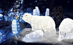 Illuminated Polar Bears