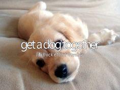 get a dog together #bucketlist
