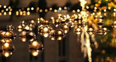 floating candles | Floating Holiday Candles in Reflection Pool | Flickr - Photo Sharing!
