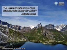 New Quote of the Week from www.bridgewest.eu/ #quotefotheweek
