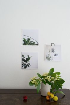 Urban Jungle Bloggers: Plants & Flowers & Art by @Curate & Display