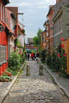Me lembra a ruazinha onde ficamos hospedados, na casa de dinamarqueses!