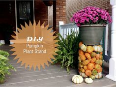 DIY Pumpkin Plant Stand by emily katherine may, via Flickr