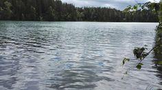 Blogi  OMAISAPU.fi      : Järvellä huumaavaa voimaa Mountains, Nature, Travel, Naturaleza, Viajes, Trips, Nature Illustration, Outdoors, Traveling