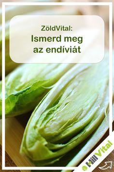 Az endívia vagy más néven a cikória a fejes salátához hasonlító salátafajta. Kissé kesernyés az íze mivel inulint tartalmaz.    Nagyon sok ásványi sót tartalmaz többek között foszfort, calciumot, vasat, meszet de vitamint (C-vitamin) is. Jelentős fehérjét és szénhidrátot tartalmaz. Az endívia kiváló étvágygerjesztő hatással rendelkezik, vizelethajtó és hashajtó hatása is van. Nagyon sokféleképpen fogyasztható, de az elkészítése hasonló a fejes salátáéhoz. Celery, Cucumber, Vegetables, Blog, Vegetable Recipes, Blogging, Zucchini, Veggies