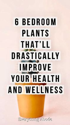 Garden Plants, Indoor Plants, Indoor Gardening, Pot Plants, Gardening Hacks, Live Plants, Health And Beauty, Health And Wellness, Health Advice