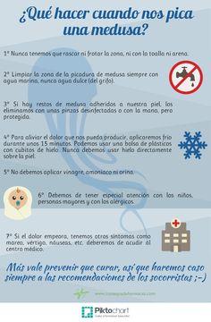 Qué hacer cuando nos pica una medusa  http://www.consejosdefarmacia.com/2014/07/picadura-de-medusa.html … #verano #picadura #medusa #consejosdefarmacia #farmacia #pacientes