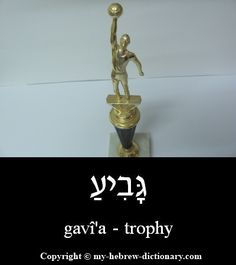 """How to say Trophy in Hebrew.  This word actually means a """"goblet"""", a big cup, and I assume it first was used to refer to the trophy cups given to sports champions before becoming the word for """"trophy"""" in general.  Click here to hear it pronounced by an Israeli: http://www.my-hebrew-dictionary.com/trophy.php"""