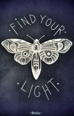 White moth; black paper; Find your light; skull moth; fine art, dots art, white ink; black paper. by District44 on Etsy