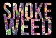 Smoke it... Everyday!