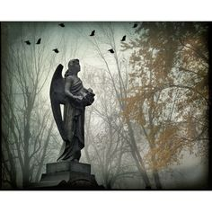 Surreal angel photograph gothic cemetery graveyard birds dark black... ($20) ❤ liked on Polyvore featuring home, home decor, backgrounds, grey home decor, goth home decor, yellow home decor, black home decor and yellow home accessories