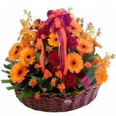 Big flower basket Australia Send Flowers, Bright Flowers, Floral Bouquets, Floral Wreath, Gold Coast Australia, Flower Basket, Planting Flowers, Flower Arrangements, Wreaths