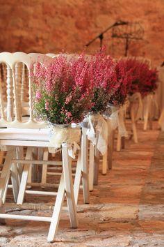 www.floresenvalladolid.es Paseo Zorrilla 44, valladolid 983 338 872