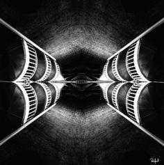 MOTYL by Rafał Kalinowski on 500px