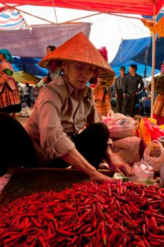 Bac Ha Market, Vietnam. Nestled in the northern hills of Vietnam exists one of the best ethnic markets in all of Southeast Asia! For six days a week, Bac Ha slumbers, but its lanes fill up to choking point each Sunday when tourists and Flower H'mong flood in for the weekly market. (V)