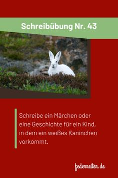 Schreibübung Nr. 43: Schreibe ein Märchen oder eine Geschichte für ein Kind, in dem ein weißes Kaninchen vorkommt. ++++++++ writing prompt: Write a fairy tale or story for a child with a white rabbit. ++++++ Photo by Andy Brunner on Unsplash Writing, Words, Author, Creative Writing Exercises, Children Stories, Stories For Children, Rabbits, Deutsch, School