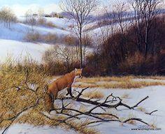 Artist Derk Hansen Unframed Red Fox Wildlife Print Silent Hunt | WildlifePrints.com