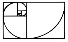 Golden Spiral Fibonacci Tattoo [ ]posts_high_quality 2 points3 points4 ...