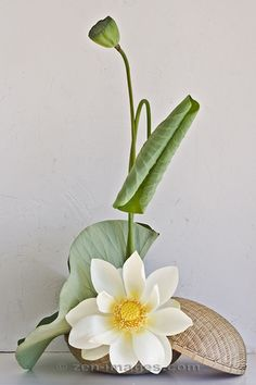 Ikebana-042.jpg by Zen-Images, via Flickr