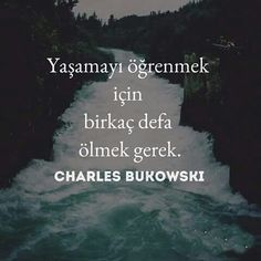 Writer Quotes, Book Writer, Wisdom Quotes, Book Quotes, Life Quotes, Philosophical Quotes, Strong Love, Charles Bukowski, Meaningful Words