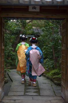 takasuzu & takahina in masuume ochaya's garden / onihide / flickr