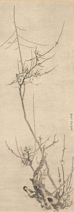 Mary Griggs Burke assembled an unparalleled collection of Asian art — more than one thousand Japanese, Chinese and Korean masterworks spanning five millennia — between 1963 and Japanese Ink Painting, Sumi E Painting, Japan Painting, Japanese Artwork, Japanese Prints, Chinese Painting, Chinese Art, Hand Painted Wallpaper, Plum Tree