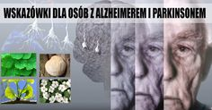 4 potężne zioła regenerujące mózg – wskazówki dla osób z alzheimerem i…