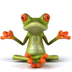 Zen tree frog