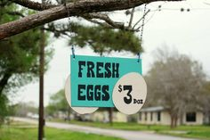 DIY Farm Fresh Egg for Sale Signs, + a pricing guide by region. Chicken Coop Decor, Chicken Signs, Chicken Art, Chicken Crafts, Chicken Houses, Sale Signs, For Sale Sign, Tim Walker, Bonsai