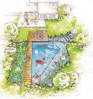 Sch ma piscine naturelle piscine naturelle pinterest for Schema piscine miroir