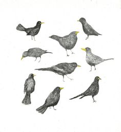 giclee print Birds by mariaelina on Etsy, $30.00