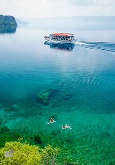 Zwemmen in het schone water van Lake Ohrid