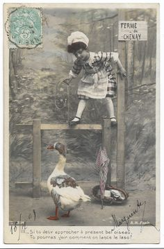 Edwardian Little Girl Catching Goose with Lasso, Antique Children Animal Farm Scene real photo postcard, tinted French postcard, RPPC by maralecollectibles on Etsy Aran, Photo Postcards, Vintage Colors, Belle Epoque, Vintage Photographs, Farm Animals, Cool Photos, Little Girls, Scene