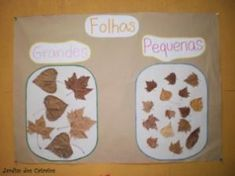 Autumn / Fall Math Centers for Kindergarten