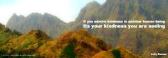 If you admire kindness in another human being its your kindness you are seeing- Lolly Daskal