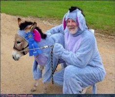 Eeyore costumes for man and miniature horse  http://barnaclebill.hubpages.com/hub/eeyorehalloweencostumesideastipsdesigns