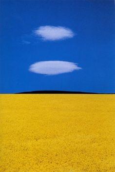 Franco Fontana, gran fotógrafo italiano nacido en Módena, en 1933, es mejor conocido por sus paisajes minimalistas y de colores abstractos.