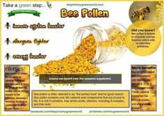 """""""Do you use Bee pollen? There are many health benefits in bee pollen, also called the """"perfect food."""" Amazingly enough, everything derived from bee pollen is as broken down as it is going to be. Health And Nutrition, Health And Wellness, Health Tips, Health Benefits, Health Facts, Immune System Boosters, Seasonal Allergies, Bee Pollen, Forever Living Products"""