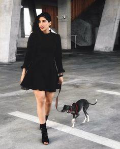 that moment when your dog fits your feed aesthetic perfectly   Ese momento cuando tu perrito va perfectamente con la estética de tu blog