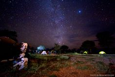 Sean Messham stunning night pic of the Serengeti Sleeping Under The Stars, Leopards, Adventure Is Out There, Amazing Destinations, Wildlife Photography, Wilderness, African, Explore, Night