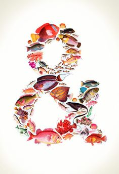 Under the Sea Ampersand  13X19 Graphic Art Print $39.00