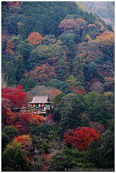 Senko-ji temple, Kyoto, Japan
